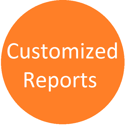 Customized Reports Logo